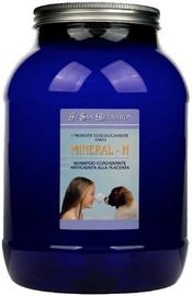 Iv San Bernard Mineral H Shampoo 3000ml