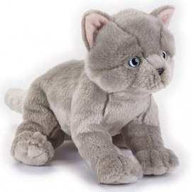 Dante National Geographics British Cat 25cm