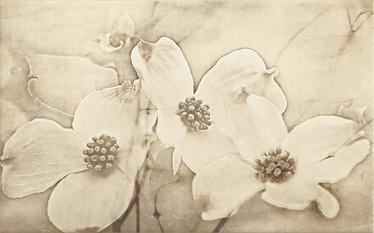 Cersanit Tuti Inserto Flower Wall Tiles 25x40cm Beige
