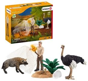 Žaislinė figūrėlė Schleich Wild Life Hyena Attack 42504