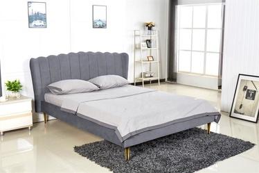 Halmar Bed Valverde 160 Grey