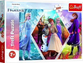 Dėlionė Frozen 2 13249, 200 dalių