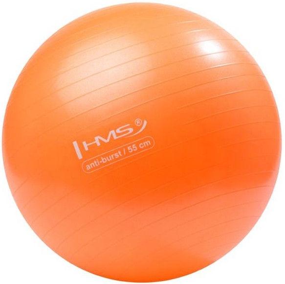 HMS Gym Ball YB02 55cm Orange