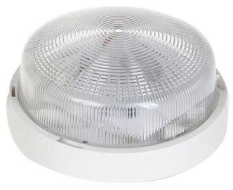 Lena Rondo Bulkhead 7W 920lm LED White