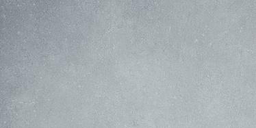 Põrandaplaat Daisen helehall 30x60cm