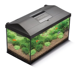 Aquael Aquarium Leddy Set 40 Black