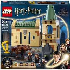 Конструктор LEGO Harry Potter™ Хогвартс: пушистая встреча 76387, 397 шт.
