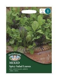JAUKTI SALĀTI Pikantas salātu lapas