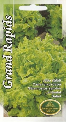 Sēklas salāti Grand Rapids, 2 g