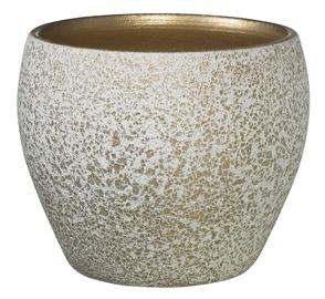 Вазон Soendgen Keramik 4006063307380, золотой/белый