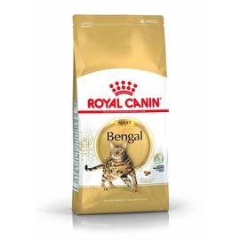Royal Canin FBN Bengal Adult 2kg