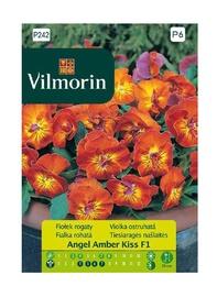 Atraitnīšu sēklas Vilmorin Angel Amber Kiss