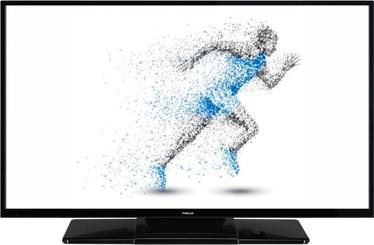 Televizorius Finlux 49-FFC-5622