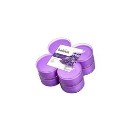 Svece 8gab Lavender