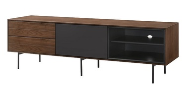 Signal Meble Sion TV Table Walnut/Graphite