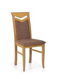 Svetainės kėdė Citrone, alksnio spalvos