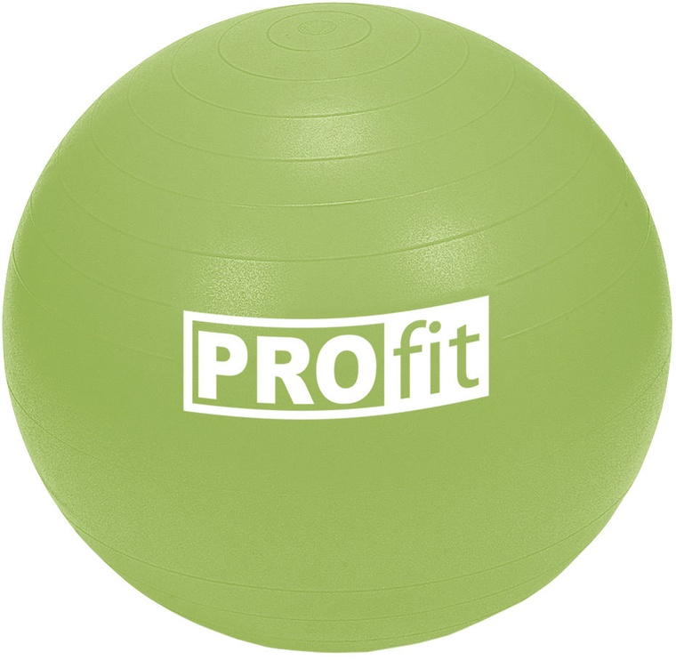 ProFit Exercise Ball 55cm Green