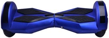 Riedis Visional VSS-1438 Blue/Black
