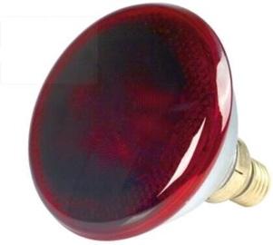 Инфракрасная лампа Philips IRL 88255, белый