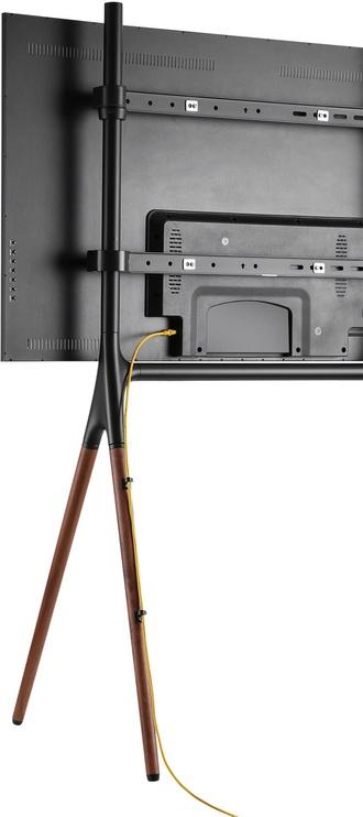 NewStar Flat Screen Floor Stand 37-70'' Black