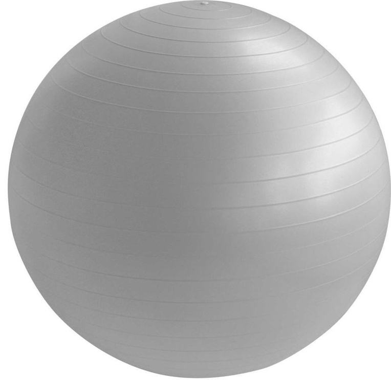 EB Fit Anti-Burst Gym Ball 85cm Gray