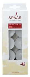 Spaas Tea Candles 3.9x1.5cm 10pcs White