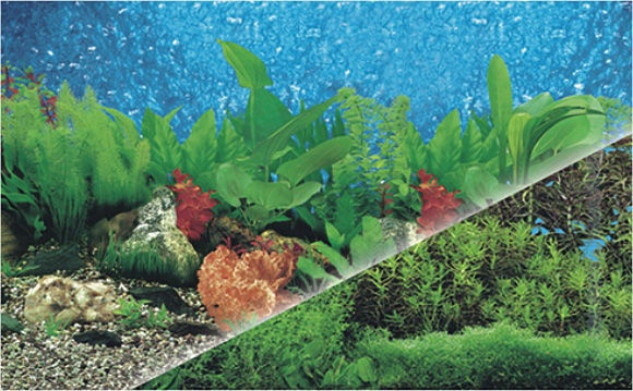 Boyu Plastic Background J19/J33 60cm