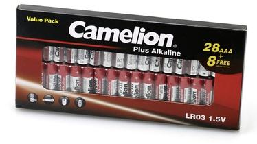 Батарейка Camelion C PLUS 7333, LR03, 1.5 В, 36 шт.