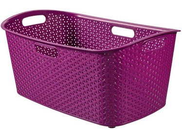 Curver My Style 47l Violet