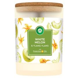 Kvepianti žvakė Airwick AW White melon, 7.8 x 11.3 cm, 54 h