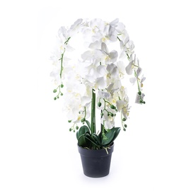 SN Artificial Orchid Flower Pot BDC18100-8 81cm