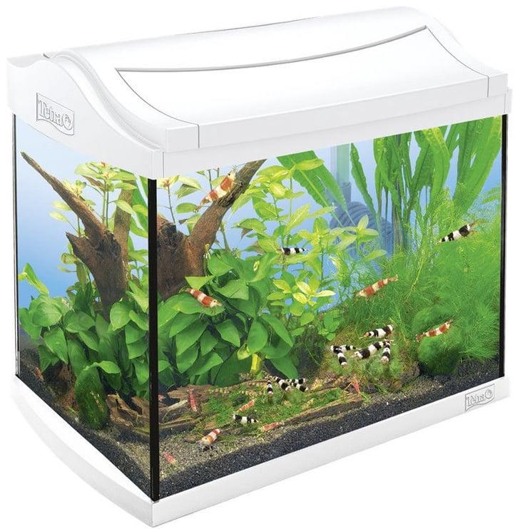 Tetra AquaArt Shrimps Aquarium Complete Set 20L White