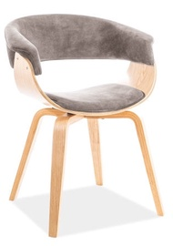 Signal Meble Indiana Velvet Chair Gray/Oak