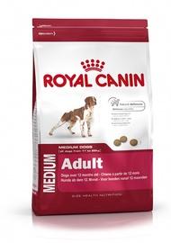 Sausas ėdalas šunims Royal Canin Medium Adult, 4 kg