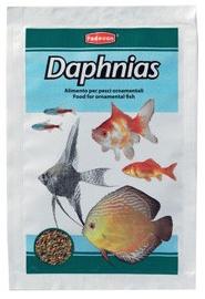 Padovan Daphnias 5g