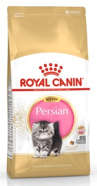 Royal Canin FBN Kitten Persian 10kg