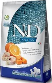 Farmina N&D Ocean Codfish Pumpkin & Orange Medium/Max 2.5kg