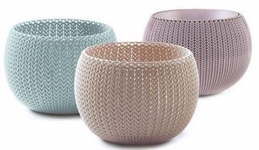 Curver Cozies Trio Flower Pot Set Violet/Sand/Blue