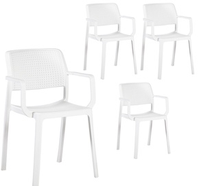 Home4you Chairs Pipa 4pcs White