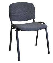 Lankytojų kėdė Signal Meble Iso Grey, 1 vnt.