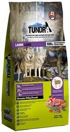 Tundra Dry Food Lamb 11.34kg