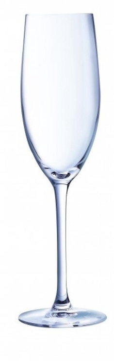 Chef And Sommelier Champagne Glass 24cl