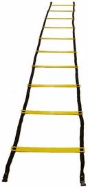 PX Sport Training Ladders 4m