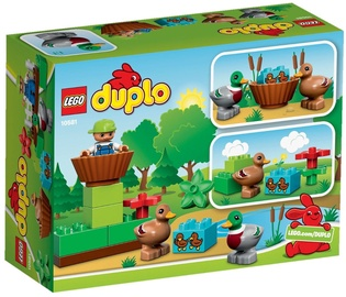 LEGO DUPLO Forest Ducks 10581