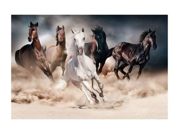 Signal Meble Horses Glass Painting 120x80cm
