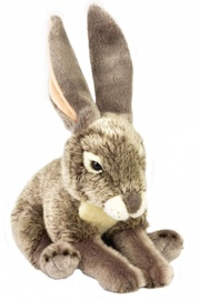 Dante National Geographic Hare 22cm