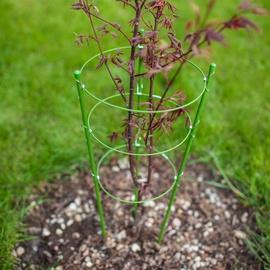 Augalų laikiklis, metalinis, spiralinis, 45 cm ilgio