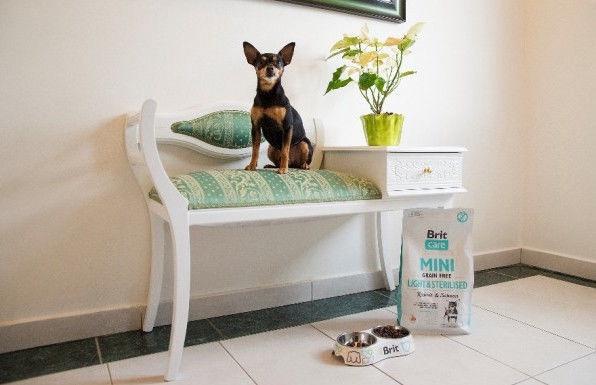 Kuivtoit koertele Brit Care Mini Light & Sterilised, 2 kg