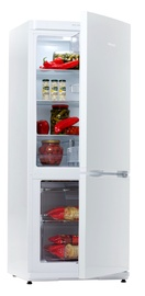 Šaldytuvas Snaigė RF27SM-S100210