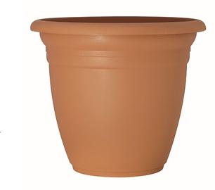 Вазон Domoletti TE000045-100, коричневый